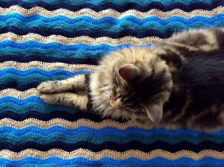 Manta chevron - chevron blanket
