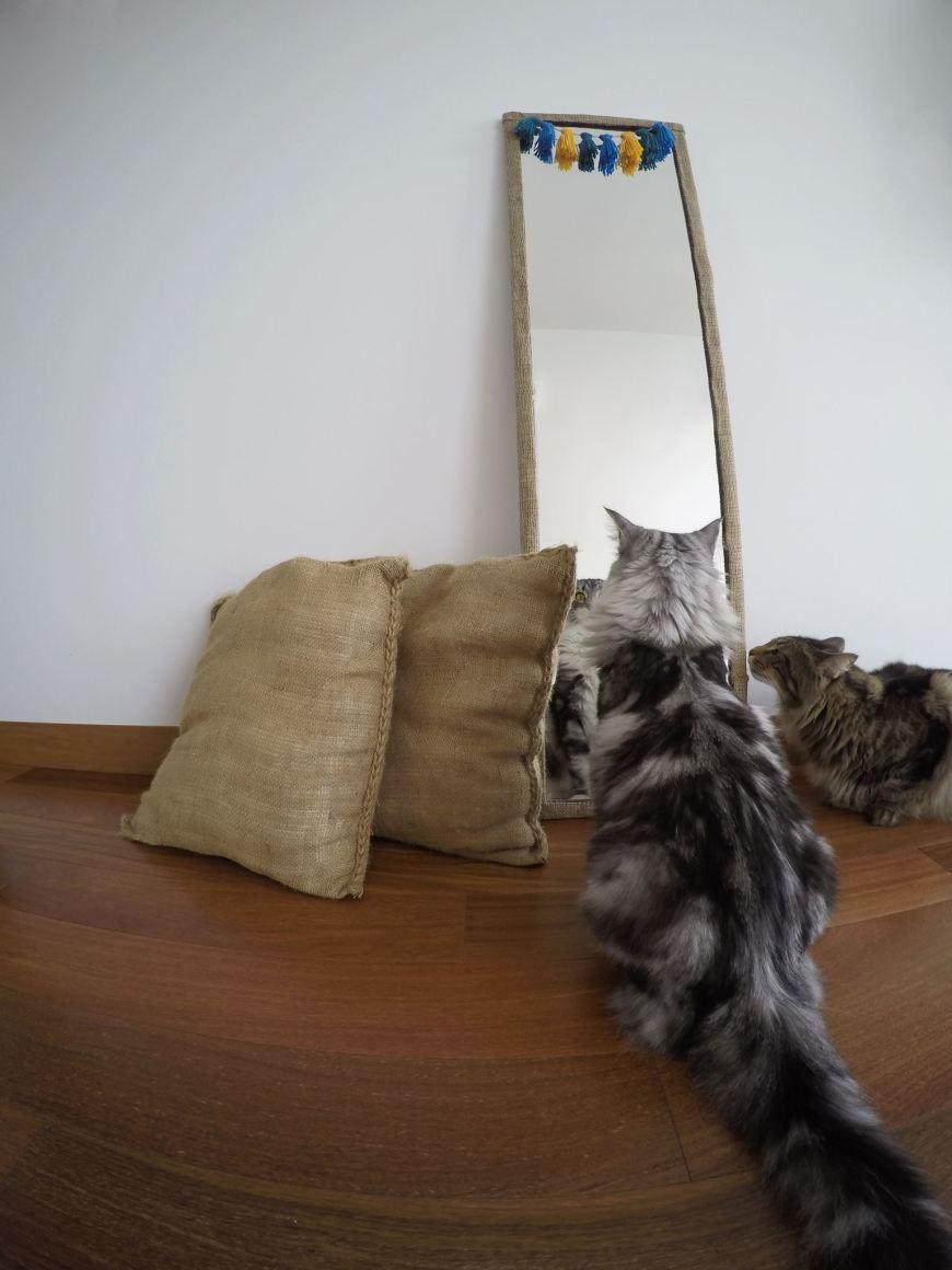 foto-espejo